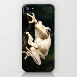 Stowaway iPhone Case