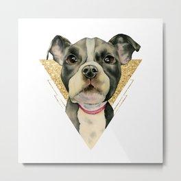 Puppy Eyes 3 Metal Print