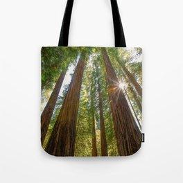 Majestic California Redwoods Tote Bag