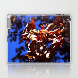Crisp Fall Leaves Laptop & iPad Skin