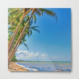 Coconut palms in Tropical North Queensland Metal Print