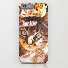 Cat in the shadows iPhone 6s Slim Case