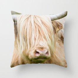 Scruffy Cow Throw Pillow