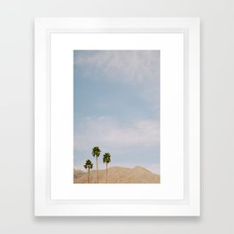 Desert Style Palm Trees Framed Art Print