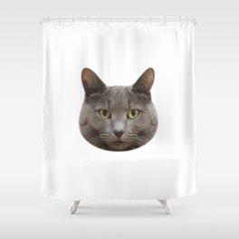 Mango, the cat Shower Curtain