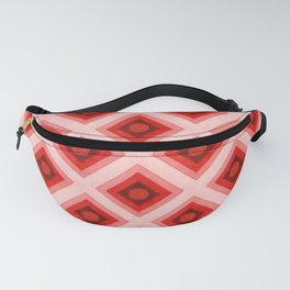 Groovy Festival Fanny Pack