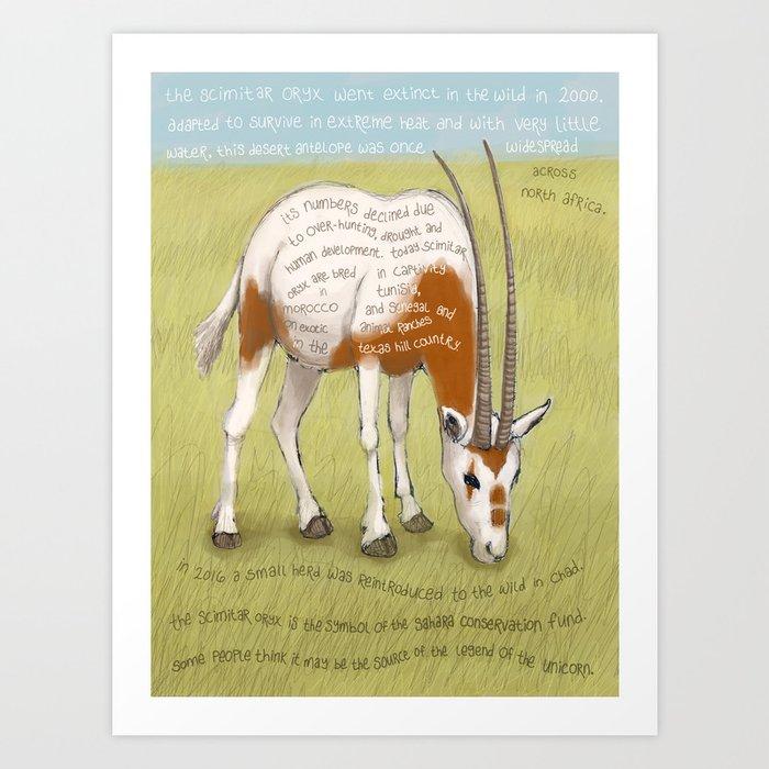 Scimitar Oryx Art Print