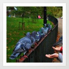 Pigeons at Hyde Park Art Print