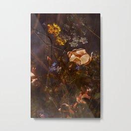 Secret Garden Metal Print