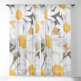 Daisy Flowers 0136 Sheer Curtain