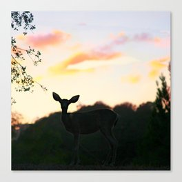 Deerest Canvas Print