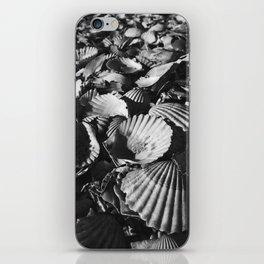 Shell-shocked iPhone Skin