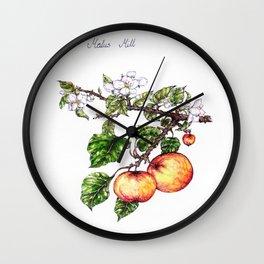 Plants & Herbs Edition Wall Clock