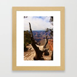 Grand Canyon View Through Dead Tree Framed Art Print