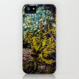 rockpool iPhone Case