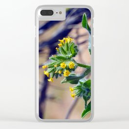 Fiddleneck Clear iPhone Case