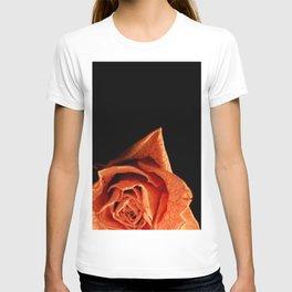 Dried T-shirt