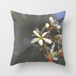 Juneberry Blossoms Throw Pillow