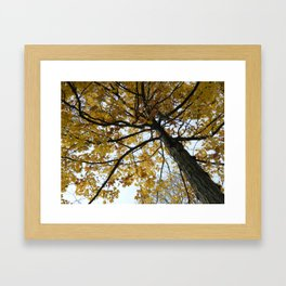 Fall on Fire Framed Art Print