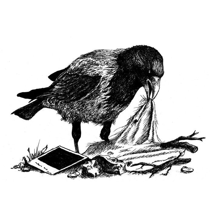 Crow's nest Comforters