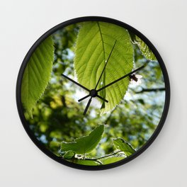 Sunlight Canopy III Wall Clock