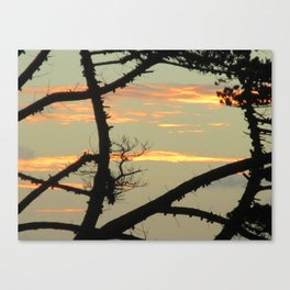 SUNSET BETWEEN A TREE Canvas Print