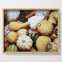 Autumn Gourds Serving Tray