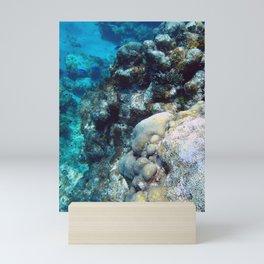 Dive Views Mini Art Print