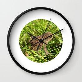 tree frog macro IV Wall Clock
