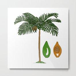 Areca Palm Metal Print
