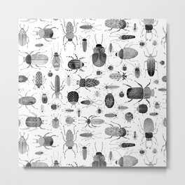 Ink Beetles Metal Print