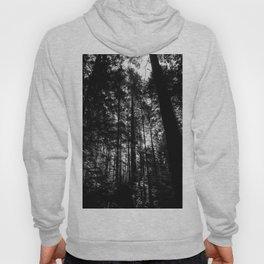 Canadian tree silhouette Hoody