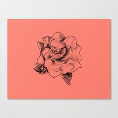 Rose on Rose Canvas Print