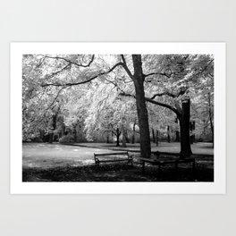 Park Bench I Art Print