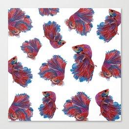Ocean Theme- Red Blue Betta Fish Canvas Print