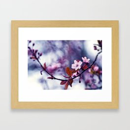 Hill Cherry Framed Art Print