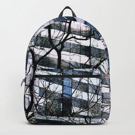 Split the Heavens Backpack