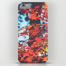 Lake Tahoe Leaves Slim Case iPhone 6 Plus