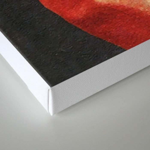 Cature, Part II Canvas Print