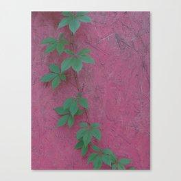 Color clash Canvas Print