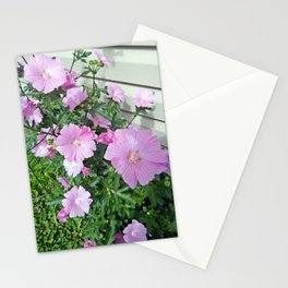Pink Musk Mallow Bush in Bloom Stationery Cards