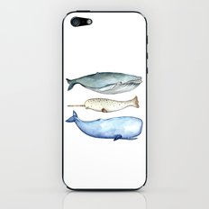 S'whale iPhone & iPod Skin