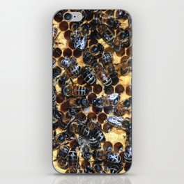 Wheres the Queen iPhone Skin