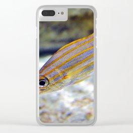 Bigeye Snapper Clear iPhone Case