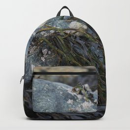 Natural Blue Rock with Limpets and Seaweed Backpack