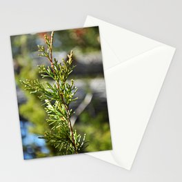 boquet of bokeh Stationery Cards