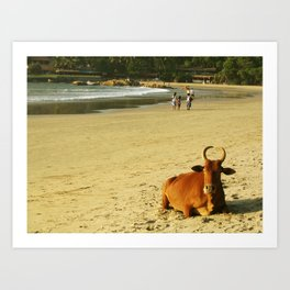 Indian moo Art Print