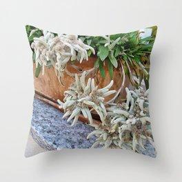 Switzerland Edelweiss Throw Pillow