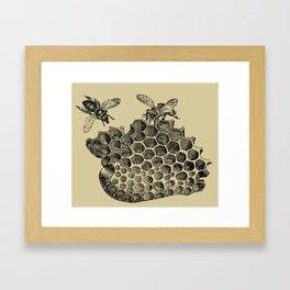 Vintage Bee & Honeycomb Framed Art Print