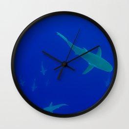 Shark School Wall Clock